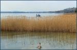 Lake_47 by Alfa30