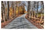 Autumn Drives by FredNunes